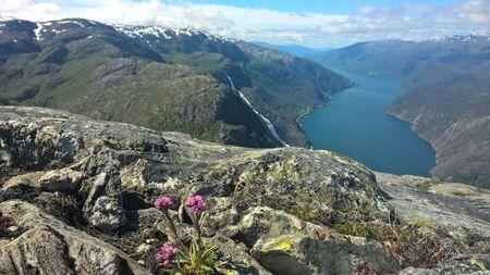 Åkrafjorden utsikt