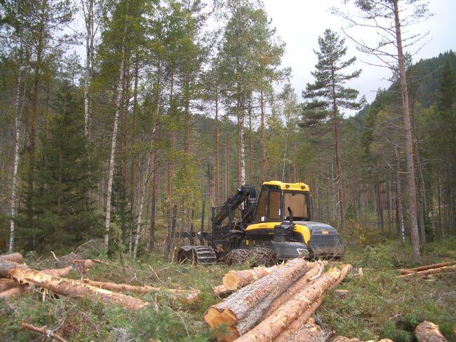 maskin med tømmer