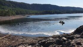 Fjerning av abbor fra Stavsjøen