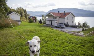 Andreas sin heimstad og hunden Karod