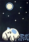 Kosmos spiser bekymrnger