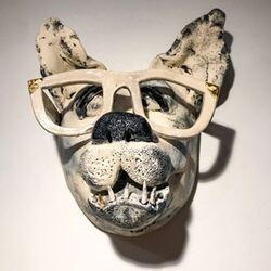 Hund m briller