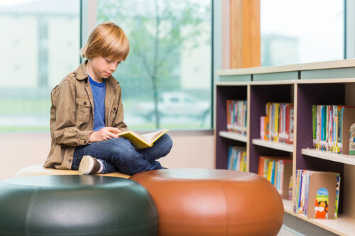 7701585-boy-reading-book-in-library[1]