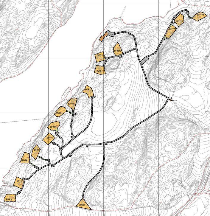 2020004 Bildeutsnitt plankart