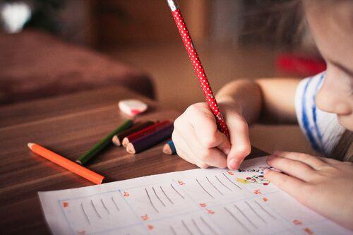 Elev med skulearbeid