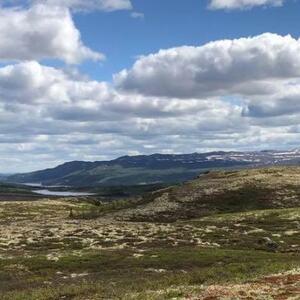 Utmark i Gausdal